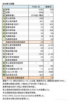 PUMA、2015年12月期 財務諸表(表1)